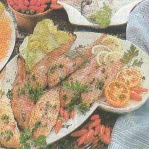 Sirkede Barbunya Balığı