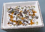 Ispanaklı Anadolu Çorbası tarifi